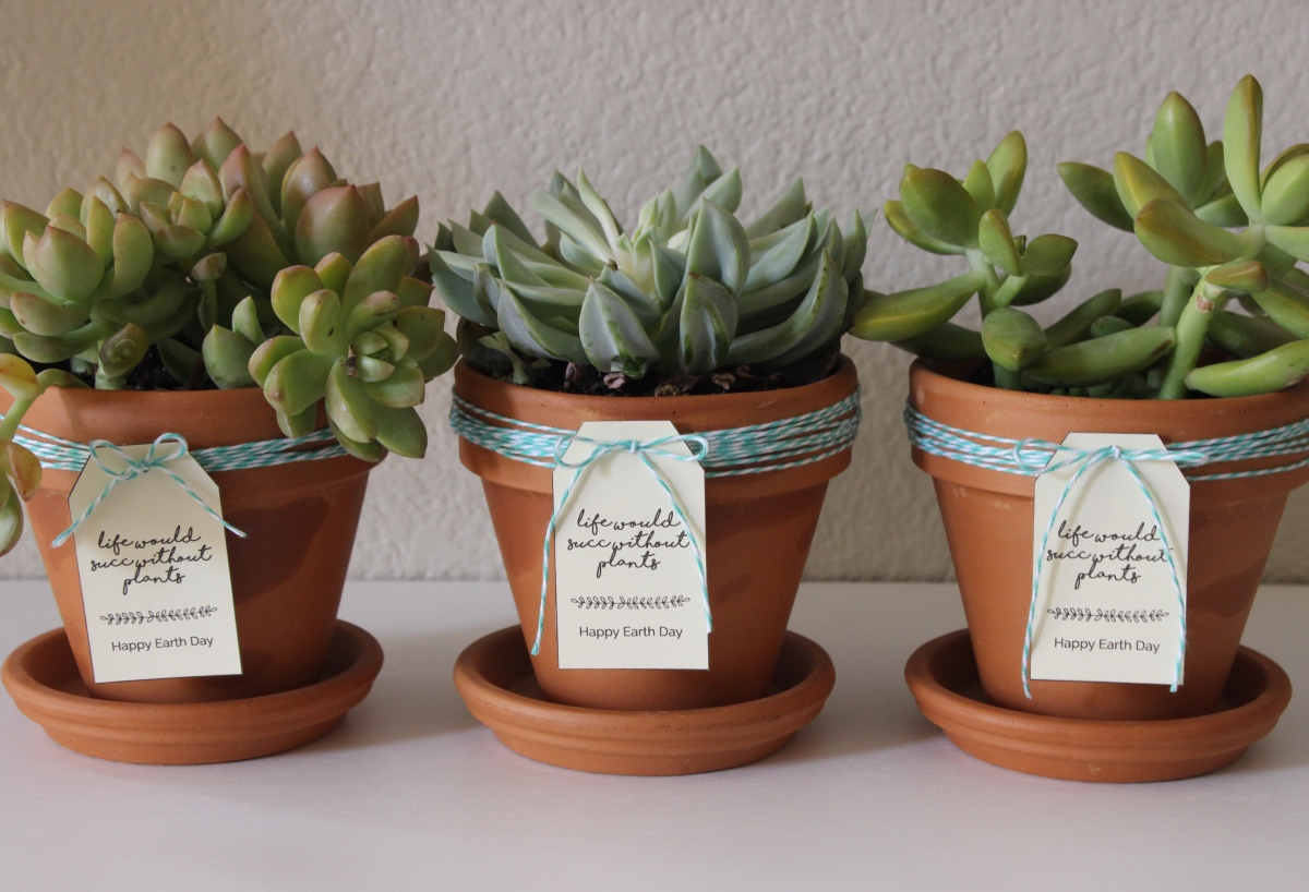 Earth Day Succulent Gift Tags